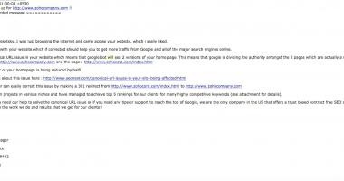 Zoho Email Pitch- DWS